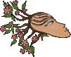 sophie stok logo